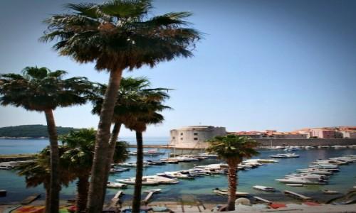 Zdjęcie CHORWACJA / Dalmacja / Dubrovnik / Widok na mury Dubrownika