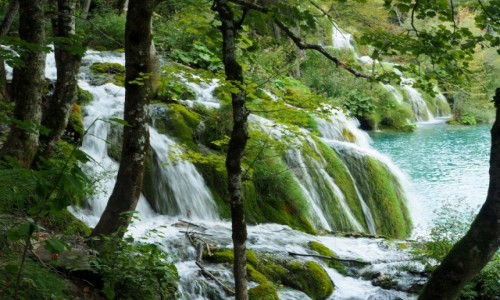 Zdjecie CHORWACJA / środkowa część Chorwacji / Park Narodowy Jezior Plitwickich / Plitwickie jeziora