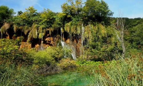 Zdjęcie CHORWACJA / środkowa część Chorwacji / Park Narodowy Jezior Plitwickich / Plitwickie jeziora