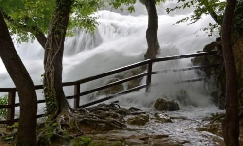 Zdjęcie CHORWACJA / środkowa dalmacja / Park Narodowy Krka / Krka