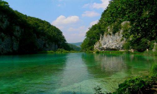 Zdjecie CHORWACJA / Chorwacja środkowa / Plitvice / trochę przyrody