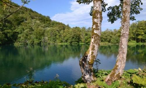 Zdjecie CHORWACJA / Żupania Licko-Senjska i Karlovacka / Park Narodowy Jezior Plitwickich / Jeziora Plitwickie