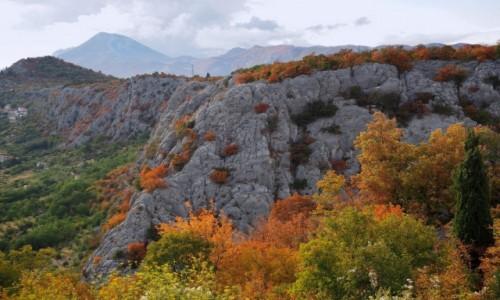 CHORWACJA / Dalmacja środkowa / Zadvarje / malowniczy kanion Cetiny...