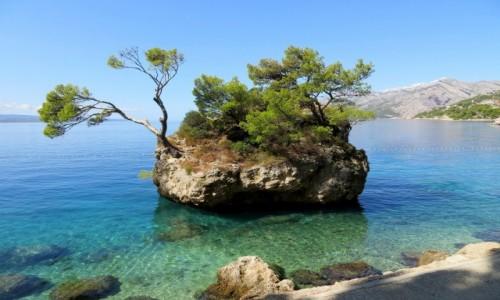 Zdjecie CHORWACJA / Riviera Makarska / Brela / kamienny symbol Breli...