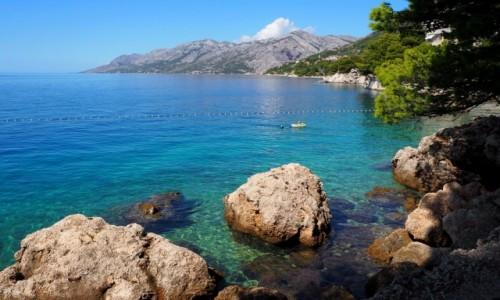 Zdjecie CHORWACJA / Riviera Makarska / Brela, Punta Rata / dobrze jest płynąć...