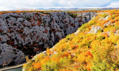 Zdjecie CHORWACJA / Dalmacja Środkowa / Zadvarje, kanion Cetiny / w drodze do morza...