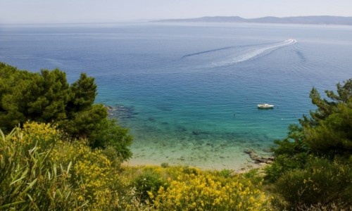 Zdjecie CHORWACJA / Dalmacja / Pisak / Adriatyk