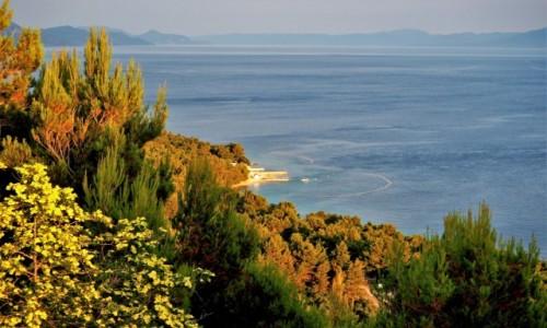 Zdjecie CHORWACJA / Riviera Makarska / Strinj / lubię spojrzeć z góry na Adriatyk...