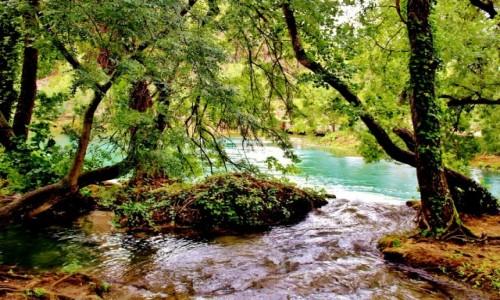 Zdjecie CHORWACJA / Dalmacja / Park Narodowy Krka / Park Narodowy Krka