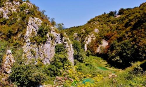 Zdjecie CHORWACJA / Żupania Licko-Senjska / Jeziora Plitvickie / Park Narodowy Jezior Plitvickich
