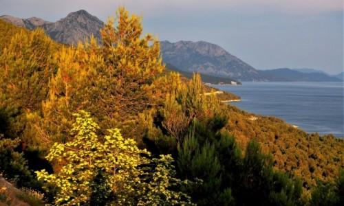 Zdjecie CHORWACJA / Riviera Makarska / Strnj / w mojej głowie wciąż lato...