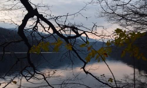 Zdjecie CHORWACJA / Środkowa Chorwacja / Park Narodowy Plitwickie Jeziora / Żółte liście