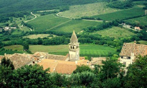 Zdjecie CHORWACJA / Istria / Motovum / Zielona wersja Chorwacji