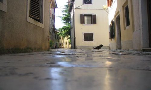 Zdjecie CHORWACJA / Istria / Porec / Boczna uliczka