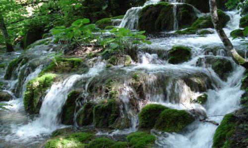 Zdjecie CHORWACJA / Plitvice / Park Narodowy Jezior Plitwickich / Konkurs Natura w obiektywie - Działalność krasowa