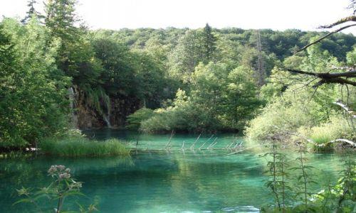 Zdjecie CHORWACJA / Plitvice / Park Narodowy Jezior Plitwickich / Plitvickie krajobrazy (2)