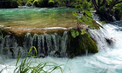 Zdjęcie CHORWACJA / Lika / Park Narodowy Jeziora Plitwickie / Trochę wody dla ochłody :)