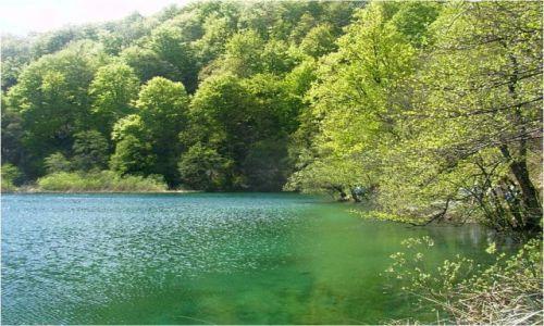 Zdjecie CHORWACJA / - / Plitvickie Jeziora / Po Chorwacji