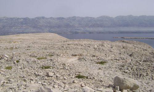 Zdjecie CHORWACJA / - / Wyspa Pag / Kamienny krajobraz