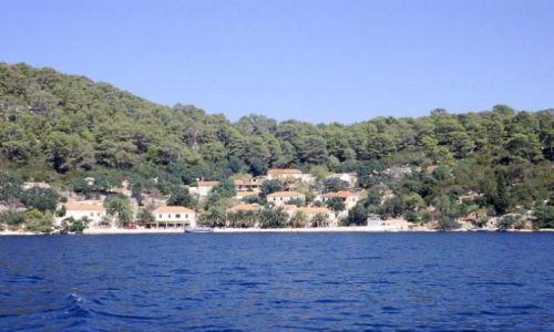 CHORWACJA / Dalmacja / wyspa Mljet / Pristaniste - Park Narodowy Mljet