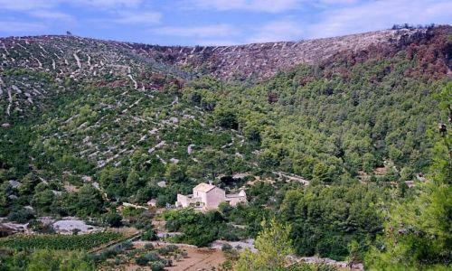 CHORWACJA / Dalmacja / wyspa Hvar / ocalałe siedlisko