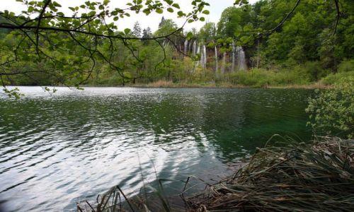 Zdjecie CHORWACJA / , położony w środkowej części kraju / Kompleks Jezior Plitwickich / Park Narodowy Jezior Plitwickich