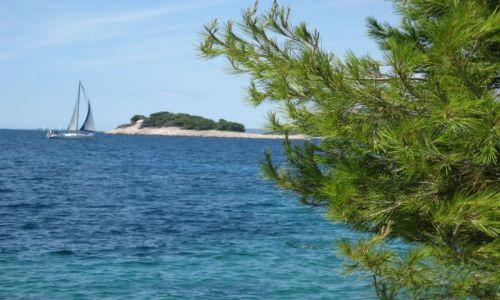 Zdjecie CHORWACJA / Dalmacja / Murter / Byle jak najszybciej do brzegu ...