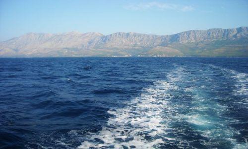 Zdjęcie CHORWACJA / Dalmacja / Adriatyk / płynąc