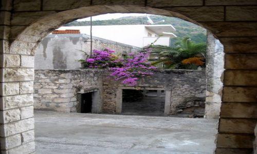 Zdjecie CHORWACJA / Dalmacja / Drvenik / trochę koloru wśród kamienia