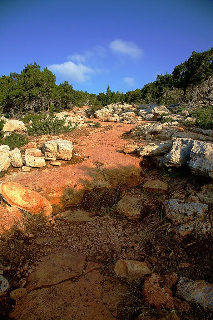 Zdjęcia: Półwysep Akamas, Polis Chrysochous, Ścieżka Afrodyty, CYPR