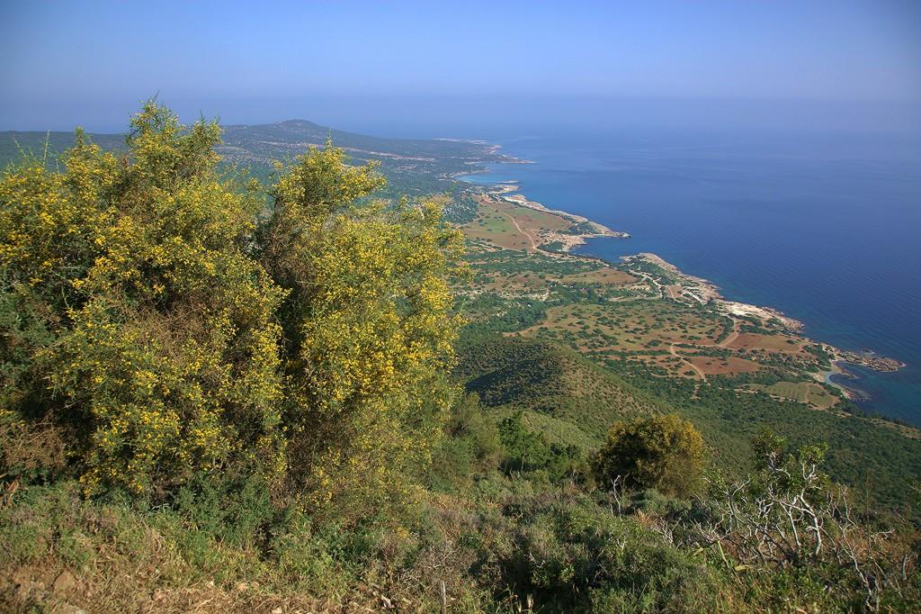 Zdjęcia: Półwysep Akamas, Polis Chrysochous, Spacer na jeden dzień, CYPR