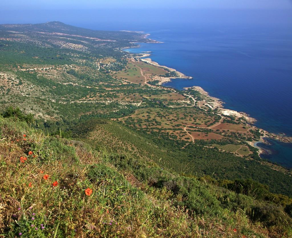 Zdjęcia: Półwysep Akamas, Polis Chrysochous, Maki z widokiem, CYPR
