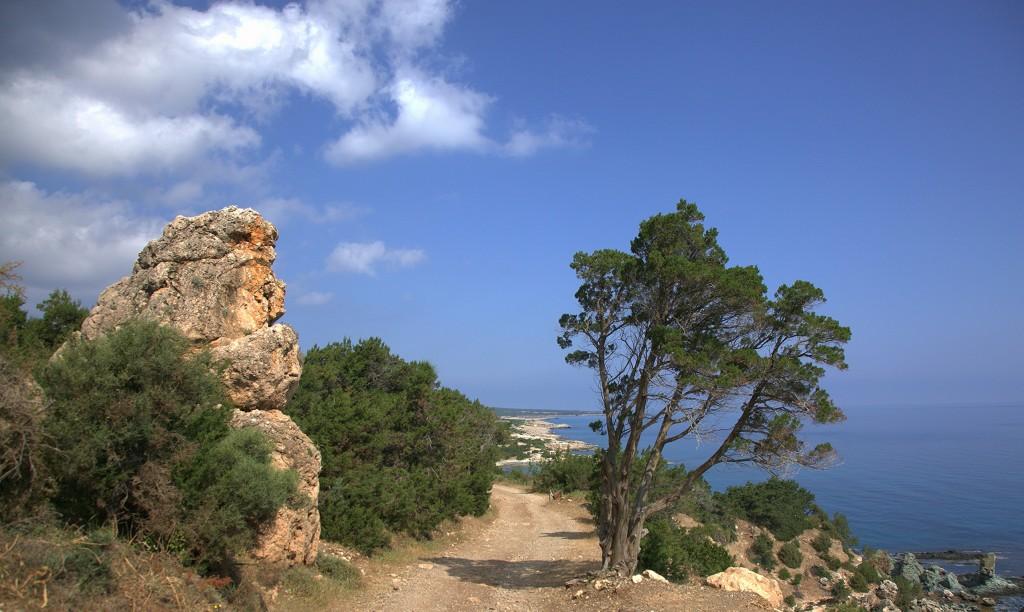 Zdjęcia: Półwysep Akamas, Polis Chrysochous, Brama, CYPR