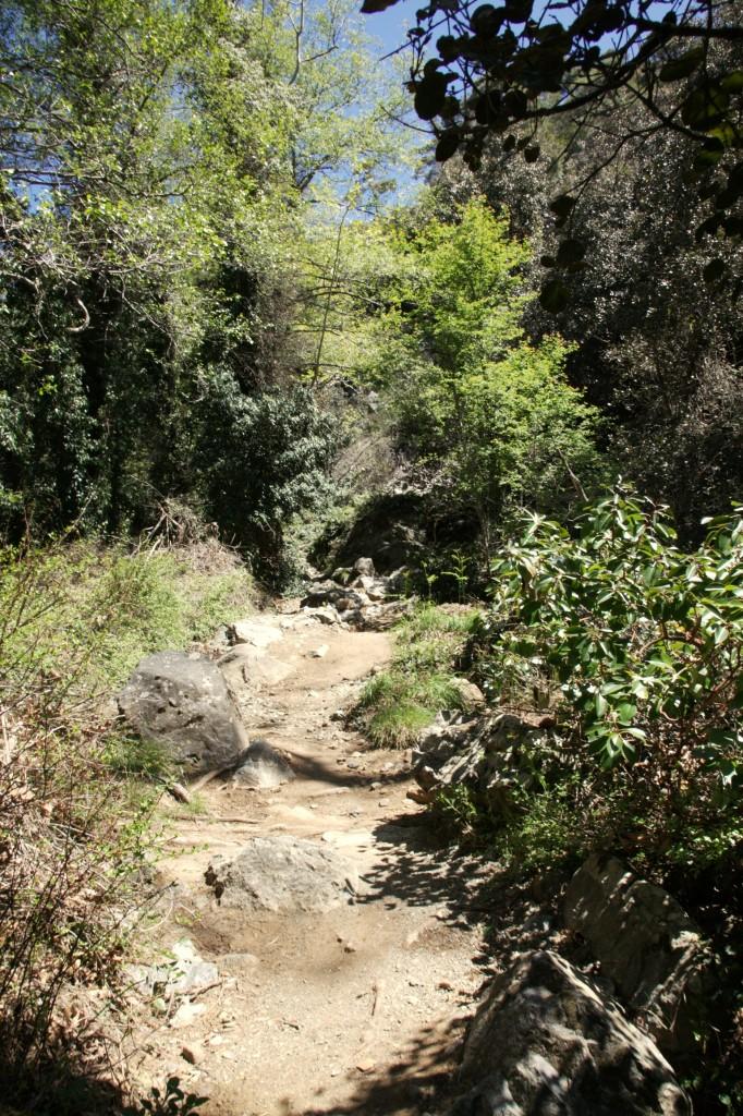 Zdjęcia: Rzeka Kryos Potamos, Góry Troodos, W drodze do wodospadau, CYPR