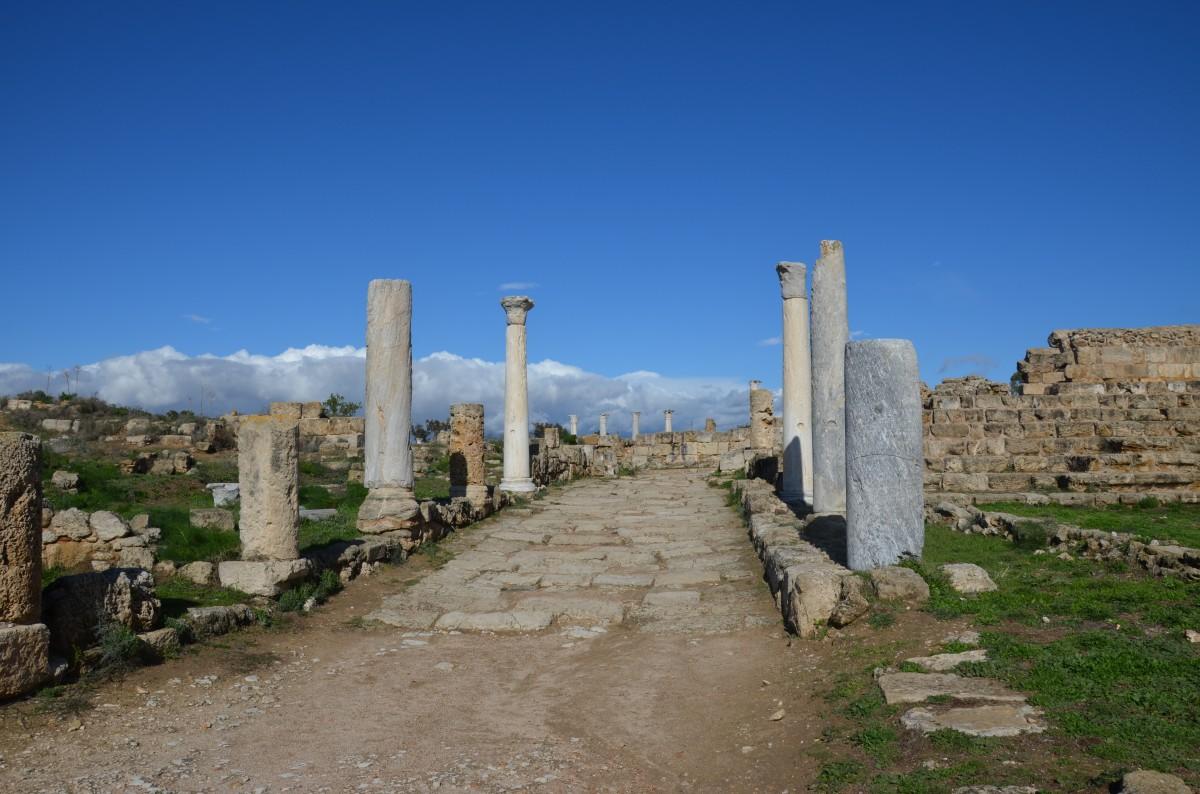 Zdjęcia: Salamina, Część turecka, Ruiny starożytnej Salaminy, CYPR