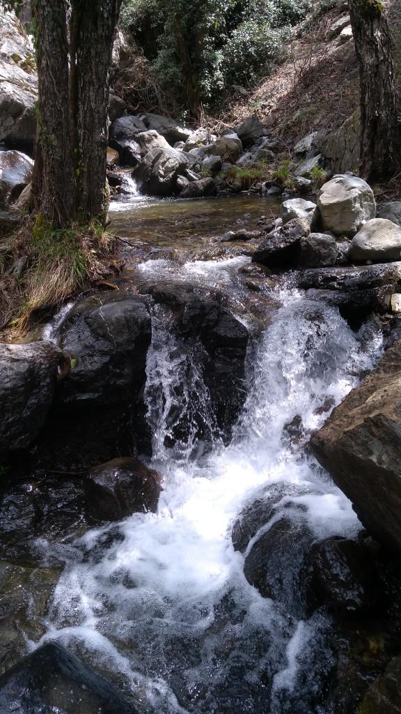 Zdjęcia: ., Góry Troodos, W drodze do wodospadu, CYPR