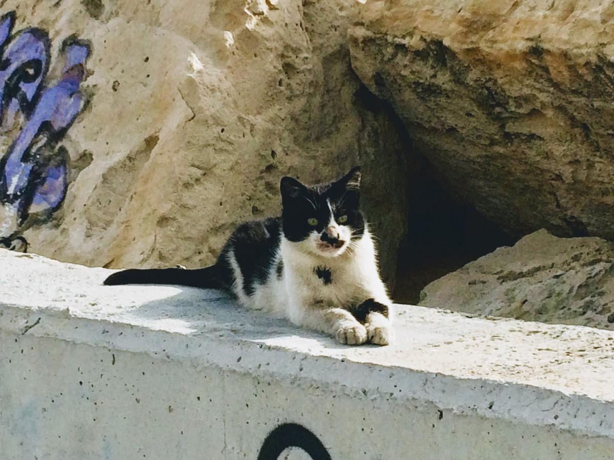 Zdjęcia: Limassol, .Kuklia, TAKA ZIMA, CYPR