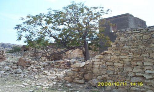 Zdjecie CYPR / oklica pafos / okolice pafos / wioska