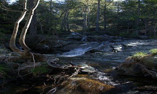 Zdjęcie CYPR / Góry Troodos / Rzeka Kryos Potamos / Do wodospadu