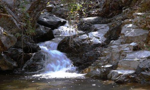 CYPR / Góry Troodos / Rzeka Kryos Potamos / Z nurtem rzeki