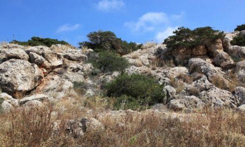 CYPR / Famagusta / Paralimni / Spacer brzegiem morza