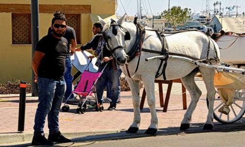 Zdjęcie CYPR / - / Limassol / Koń i jego pan
