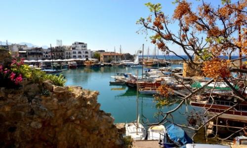 Zdjecie CYPR / - / Kyrenia / Wiosna na Cyprze
