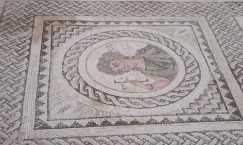 Zdjęcie CYPR / Cypr / Kurion (miasto-królestwo) / Mozaika w Domu Eustoliosa
