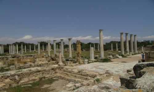 Zdjęcie CYPR / Cypr / Cypr (w pobliżu Famagusty) / Starożytne miasto (port) Salamina