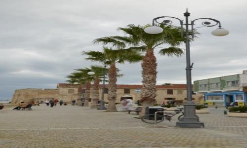 Zdjęcie CYPR / południe / Larnaka / Aleja palmowa w Larnace