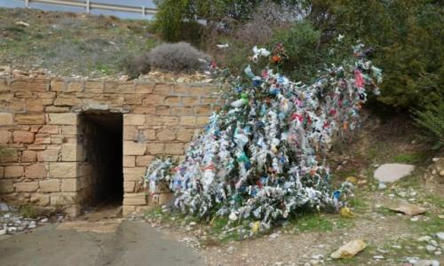 Zdjęcie CYPR / Zachód. Grecka część wyspy / okolice Pafos / Drzewo życzeń obok wyjścia do skał Afrodyty