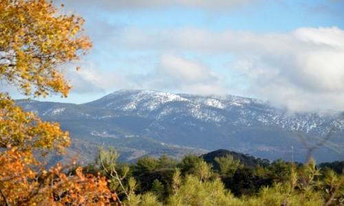 Zdjecie CYPR / Cześć grecka Cypru / Góry Troodos / Góry Troodos