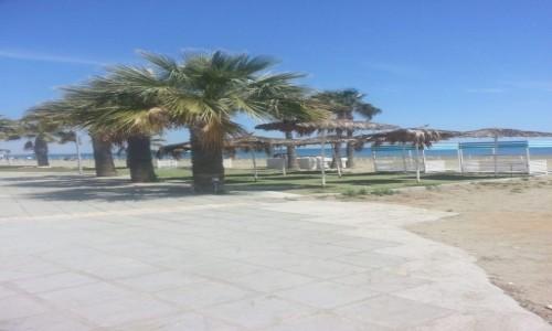 Zdjecie CYPR / Larnaca / Larnaca / Cypr Larnaka