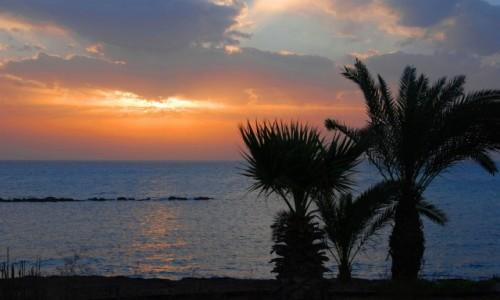 Zdjecie CYPR / okolice Pafos / okolice Pafos / Przedwieczorne chwile